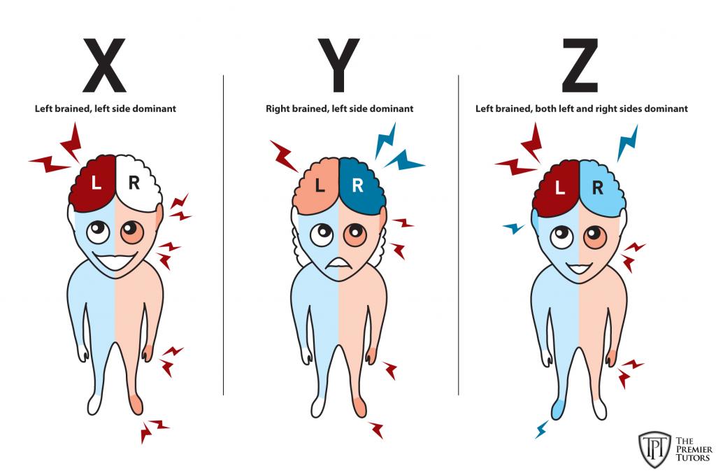 dominant-brains